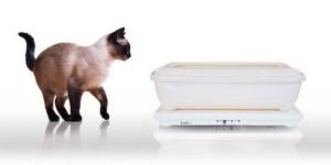 Tailio är den smarta hälsomonitorn – för din katt
